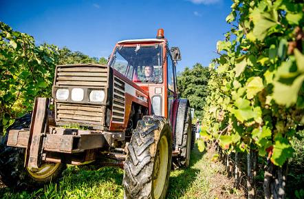 service agricole (10)