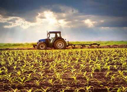 service agricole (3)